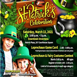 St Patricks Celebration Poster